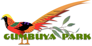 Gumbuya Park coupon